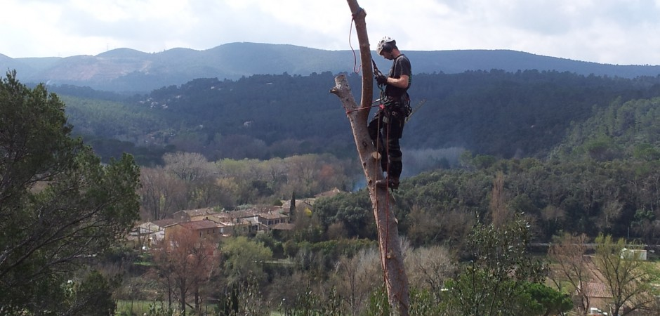 ProvenceBoomChirurg