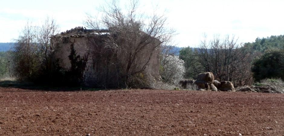ProvenceCabanin